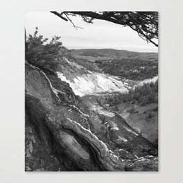 Yellowstone River At Lava Creek Canvas Print