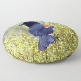 Tijuana Slough Male Redwing Blackbird Floor Pillow