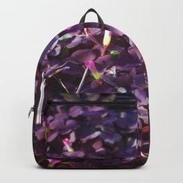 Pretty in Purple Flowers Backpack