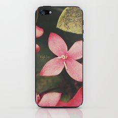 Magenta Flowers iPhone & iPod Skin