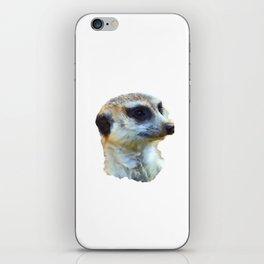 Hakuna Timone iPhone Skin