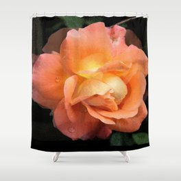 Rose With Dew Abstract Shower Curtain