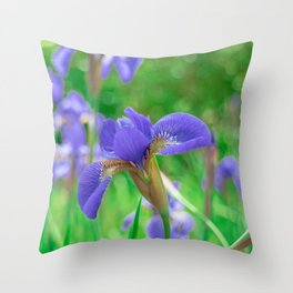 Group of purple irises in spring sunny day Throw Pillow