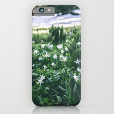 Avalanche Lilies iPhone 6s Slim Case