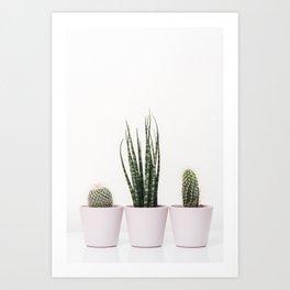 Trendy cactus plants Art Print