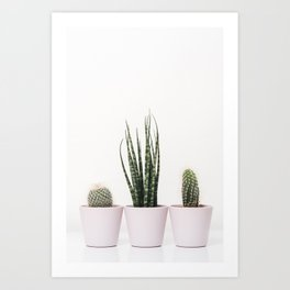 Trendy cactus plants Art Print