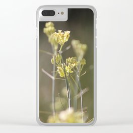 Closeup of Desert Milkweed Sunnyland Estates Clear iPhone Case