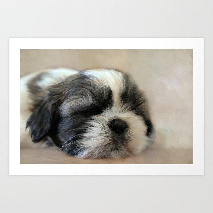 Puppy Love Kunstdrucke