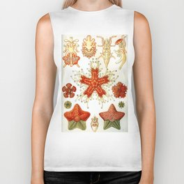 Common Starfish Drawings Biker Tank