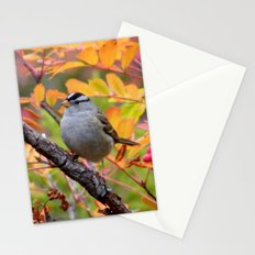 Bird in Autumn Foliage Stationery Cards