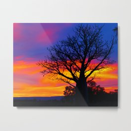 Pinks  n Purples thu Boab Metal Print