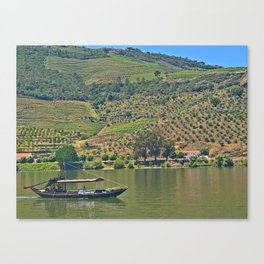 Views of the Douro wine country, off the Douro River, while lunching Canvas Print
