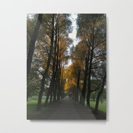 Gate Path Metal Print