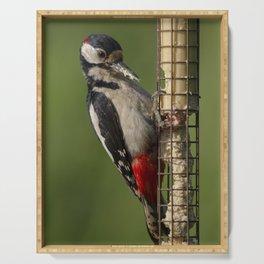 Woodpecker on feeder Serving Tray