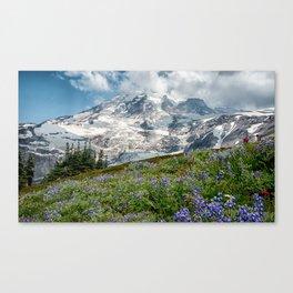Scenic Landscape Art, Mt. Rainier, Mt. Rainier National Park, Paradise Canvas Print