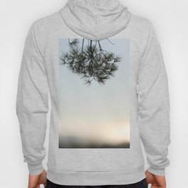 Pine tree trunk and branch Hoody
