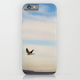 FREE SPIRITS HAVE TO SOAR ♡ iPhone Case