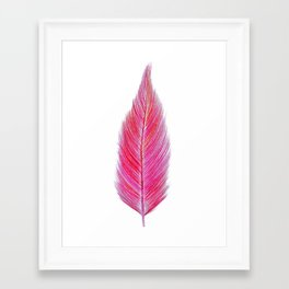 red feather Framed Art Print