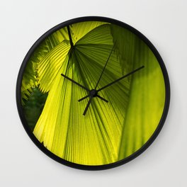 Licuala Grandis in the Morning Light Wall Clock
