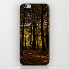 Tree Party iPhone & iPod Skin