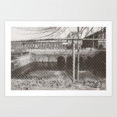 Beyond the Fence Art Print