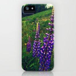 Quaker Bonnets iPhone Case