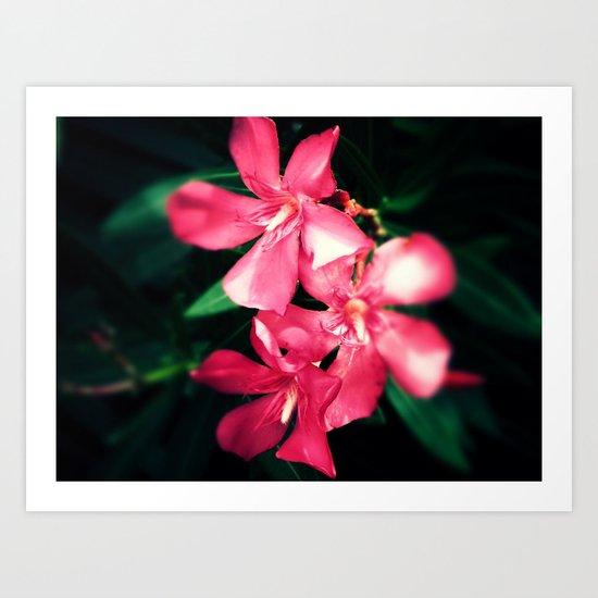 Pink Flowers Revamped Art Print