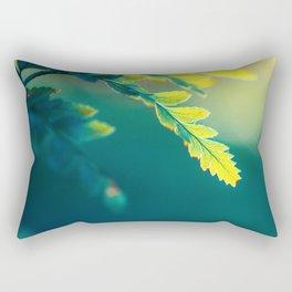 From Deepness to Surface Rectangular Pillow