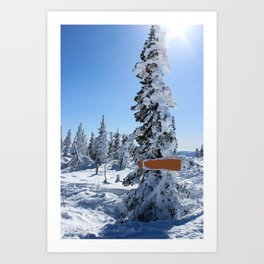 Winter mountans Art Print