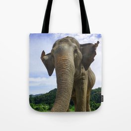 Elephant in Northern Thailand Tote Bag