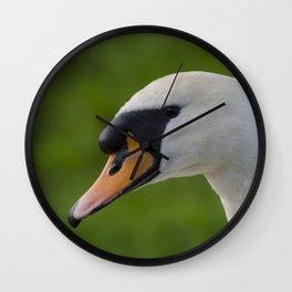 Mute swan pen Wall Clock