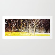 Nature finds the way inside... and outside... Everywhere! Art Print