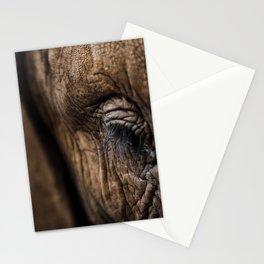 Wise Eyes Stationery Cards