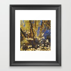 Water dreams Framed Art Print