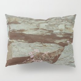 The Perseverance of Mother Nature Pillow Sham
