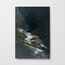 Latourell Creek Metal Print