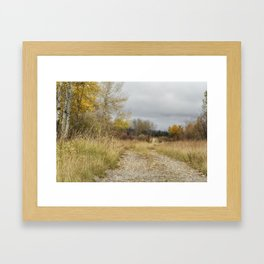A Walk in Willow Flats - Grand Tetons Framed Art Print
