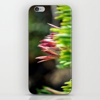 plant iPhone & iPod Skins featuring plant by  Agostino Lo Coco