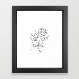 Botanical illustration line drawing - Peony Framed Art Print