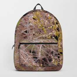 Closeup green plant and dry grass field background Backpack