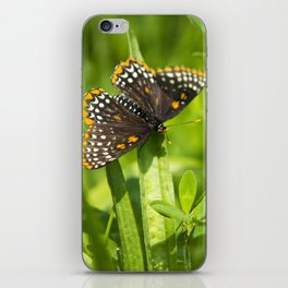 Pretty Butterfly iPhone Skin