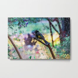 Let it Ring-New Holland Honeyeater Metal Print