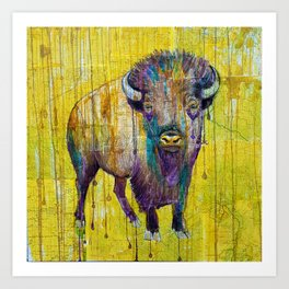 Colorado Buffalo Art Print