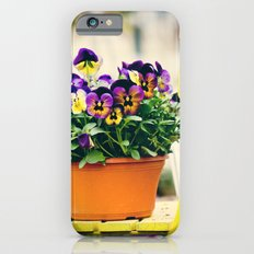 pansies III Slim Case iPhone 6s