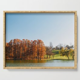 Autumn Trees Landscape, Bucharest Romania, Fall Season, Bucuresti Park, Forest Tree, Autumn Colors Serving Tray