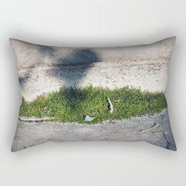 Longwood Gardens - Spring Series 98 Rectangular Pillow
