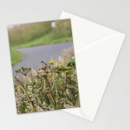 Crowned Sparrow Stationery Cards