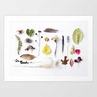 botanical Art Prints featuring botanical by Miles of Light