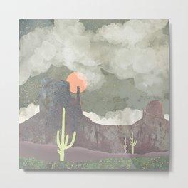 Desertscape Metal Print