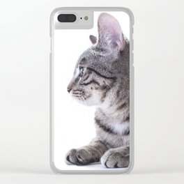 Cat Chilling Clear iPhone Case